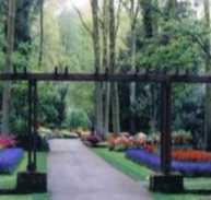 Tools & Resources - Zen Gardens in Holland
